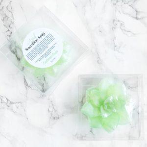 Grønn sukkulentsåpe med eple duft