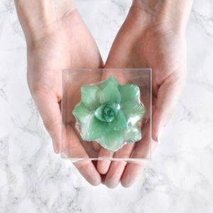 Grønn sukkulentsåpe med grantre duft